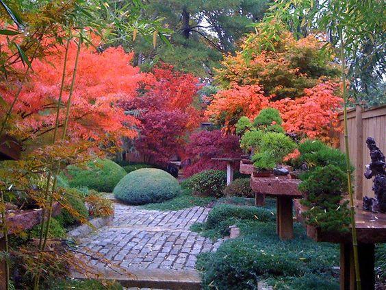 24. Japanese Zen Garden