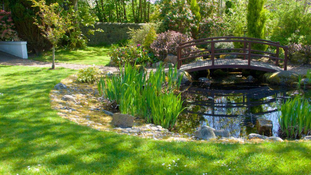 26. Large Garden Pond