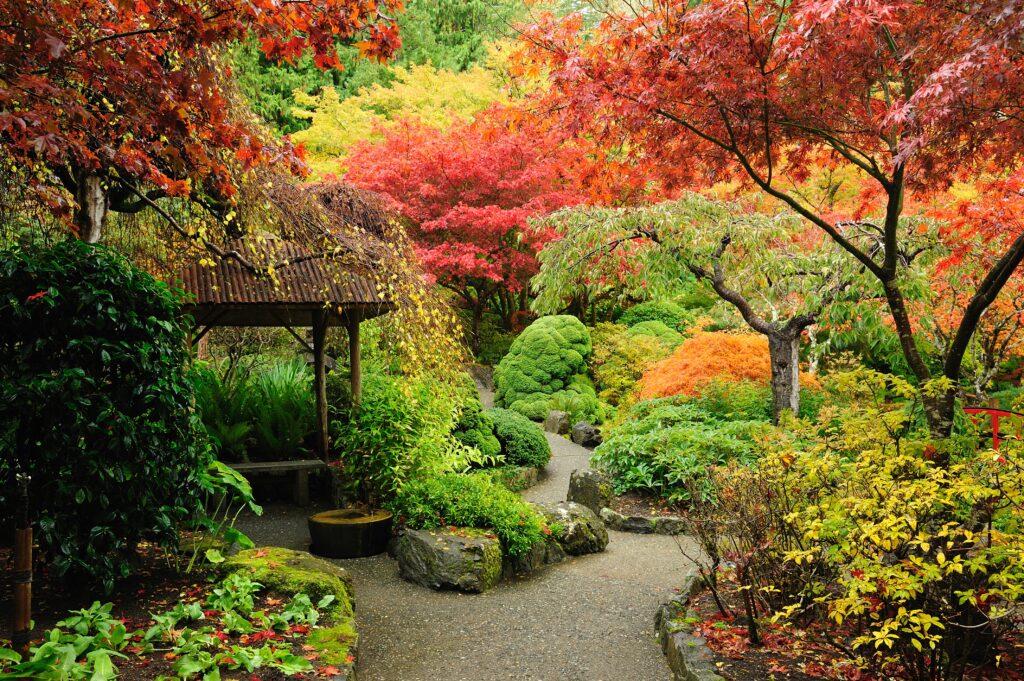 5. Japanese Garden Design