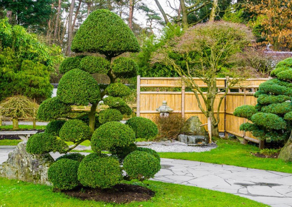 7. Japanese Garden Planting