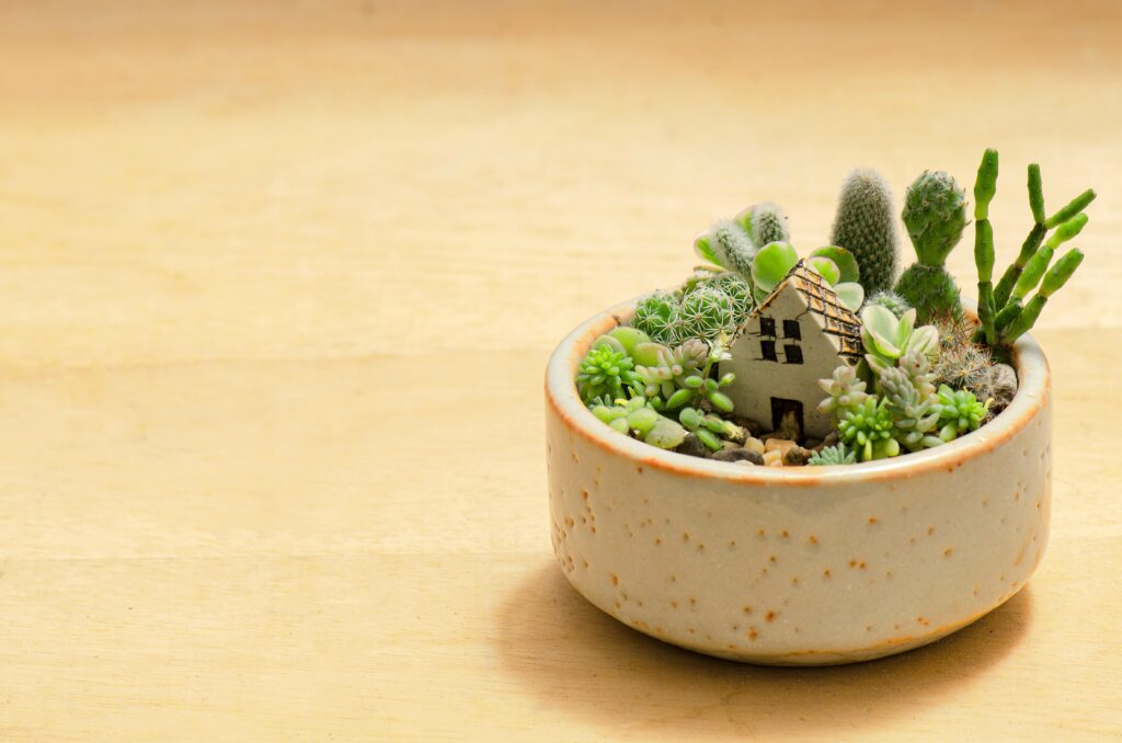 8. Miniature Fairy Garden