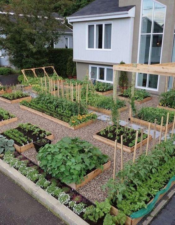 13. Vegetable Garden Landscaping