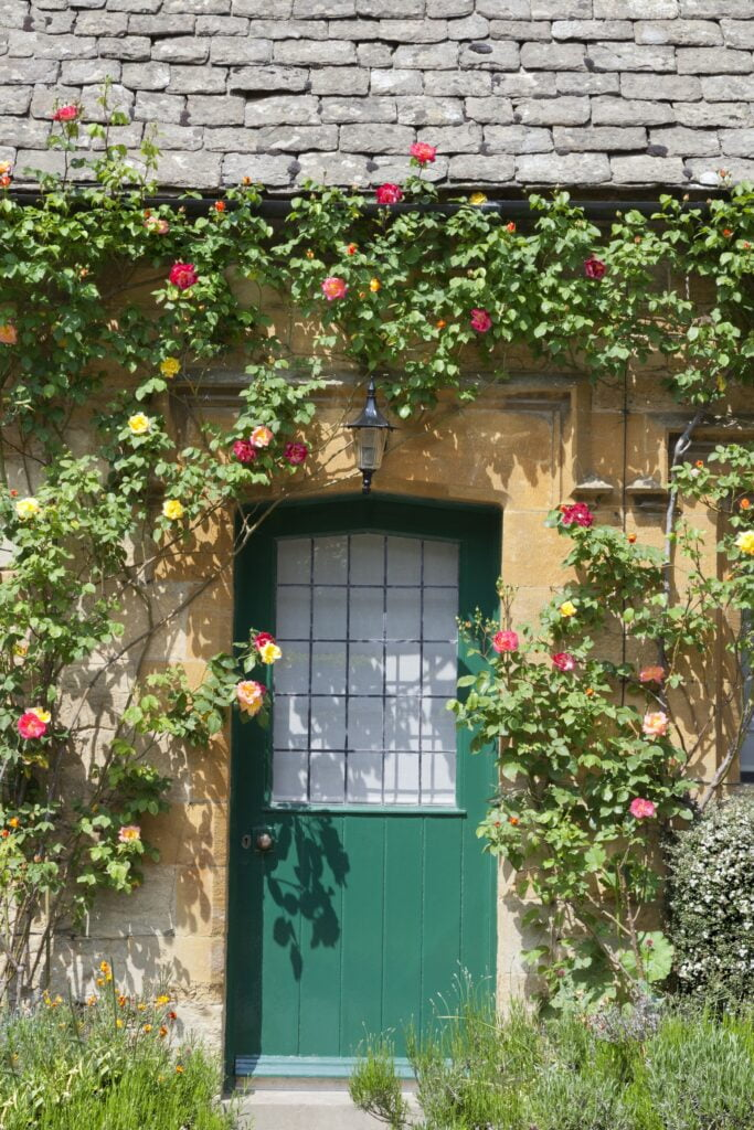 front-door-traditional-english-cottage
