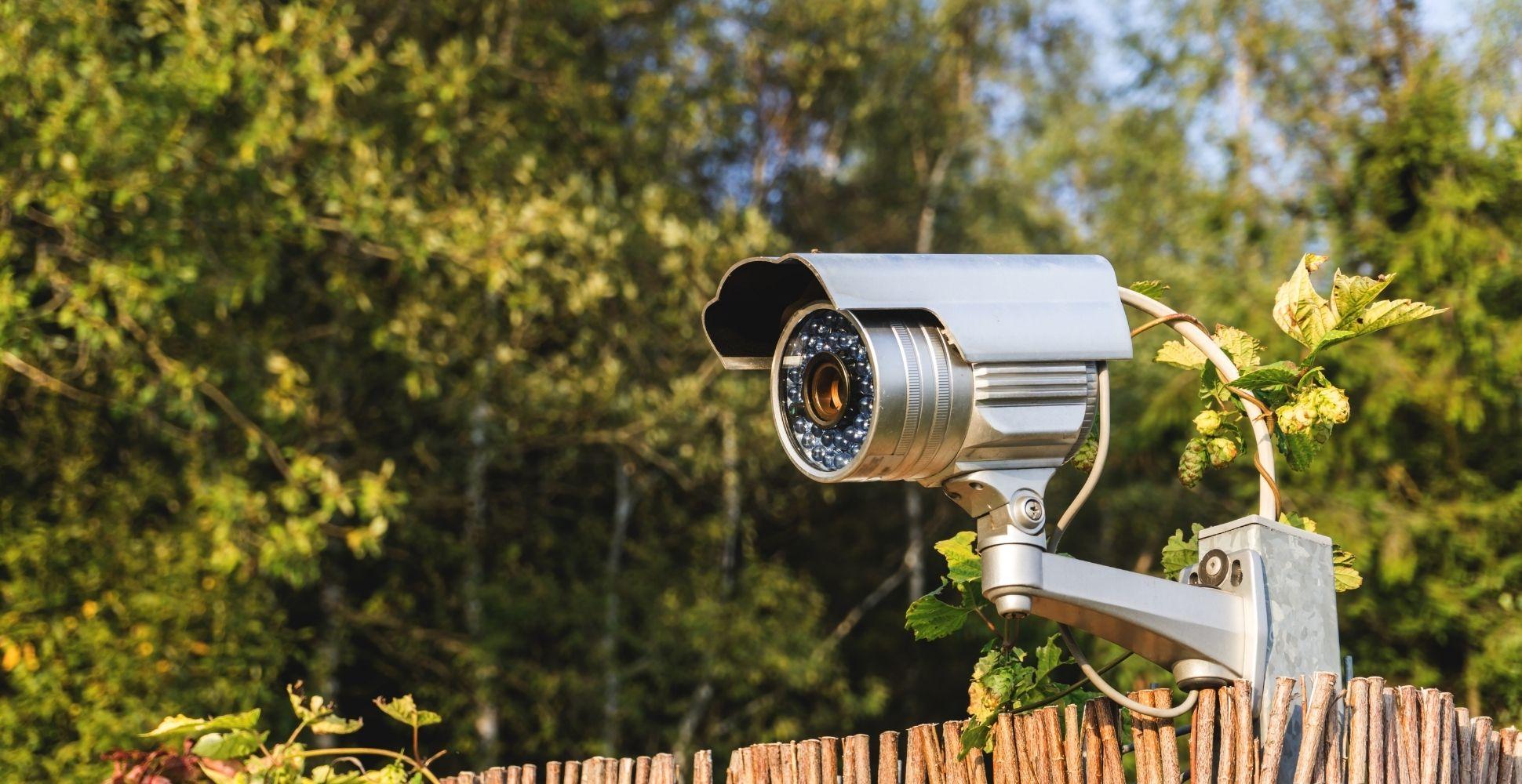 how-to-burglar-proof-your-garden